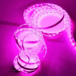 Taśma LED GERLED Professional 12V 3528 300 LED IP20 fioletowa 1 m