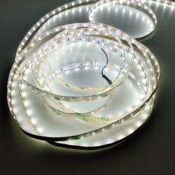 Taśma LED GERLED® Professional 12V 3528 300 LED IP65 biała zimna